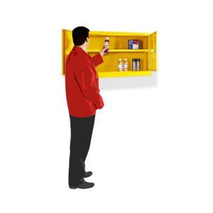 Dangerous Substance Cabinets – Mini