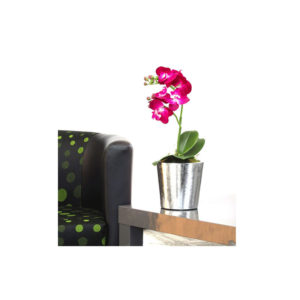 Vanda Orchid Vase Silver Foil Pot